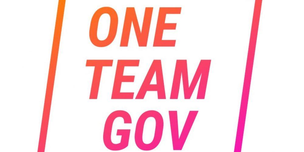 One Team Gov logo