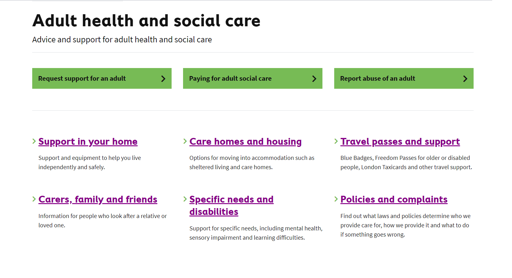Croydon's new adult health and social care section